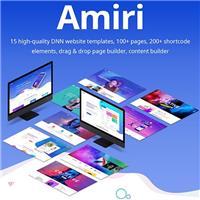 DNN GO ,AMIRI Theme
